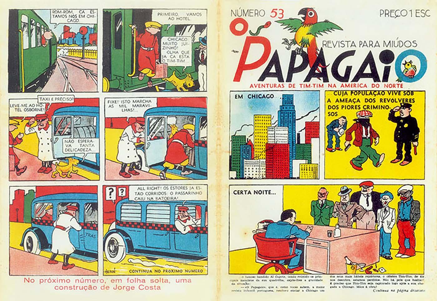 O Papagaio Tintin