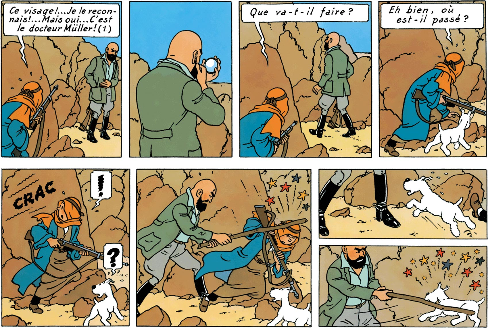 Müller - Tintin au pays de l'or noir