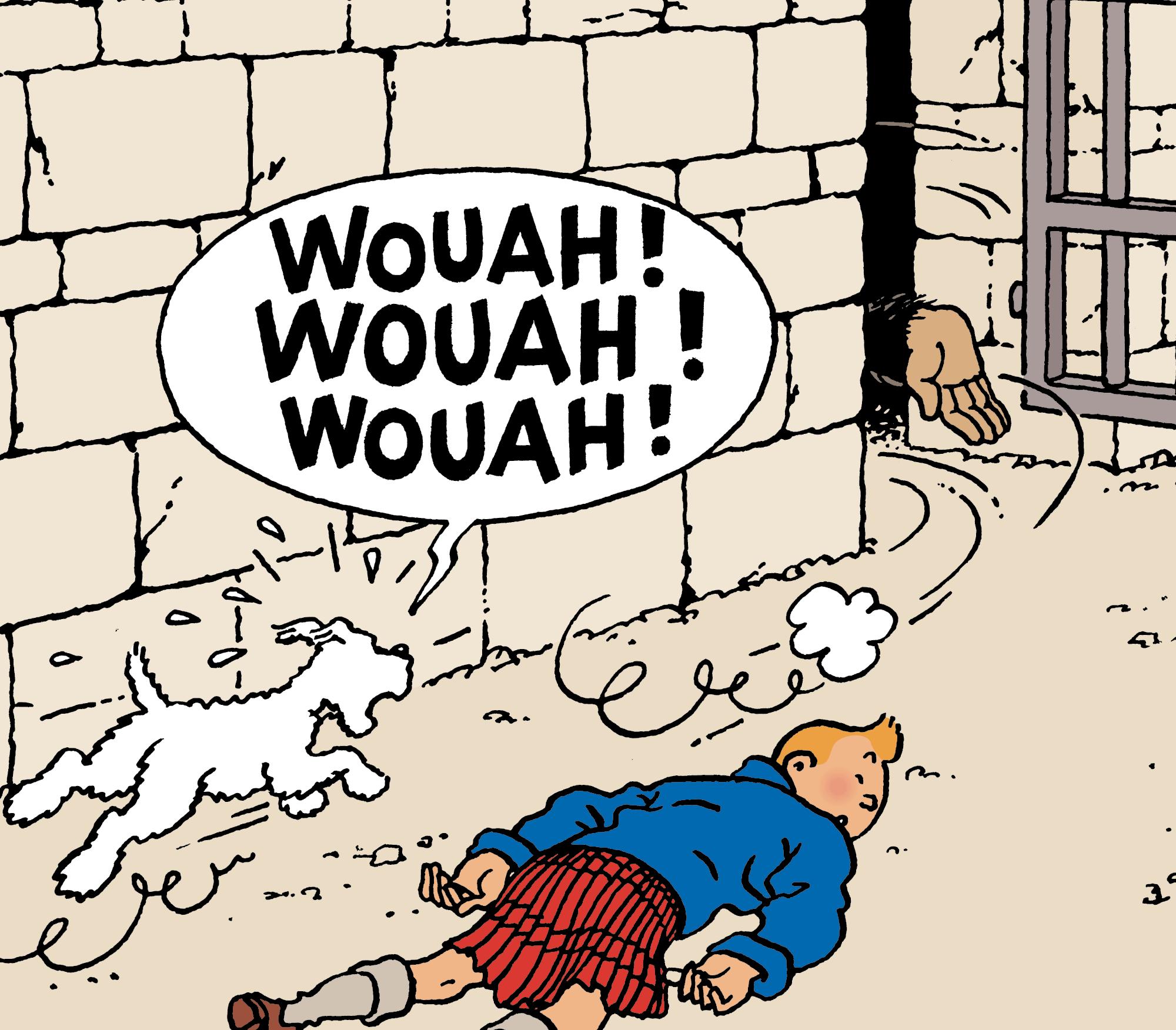 Tintin - Les Aventures de Tintin - Milou