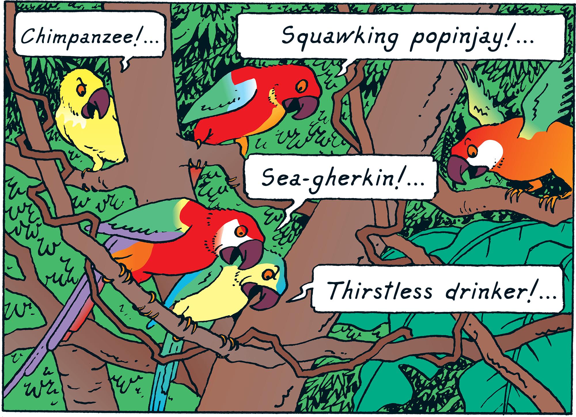 Red Rackham's Treasure - Parrots