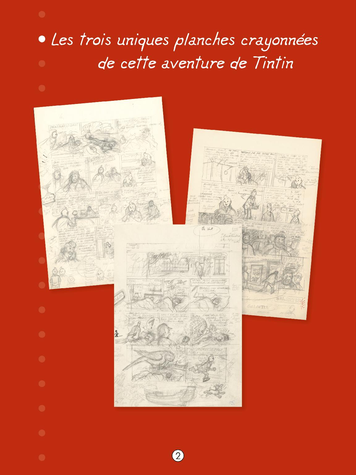 Tintin et l'Alph-Art - page 3